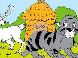 Tigre negro y el venado blanco