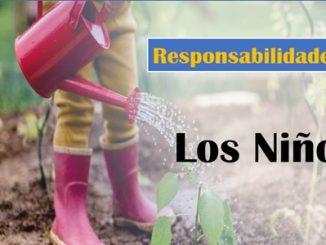 Cuadro de responsabiliades de los niños