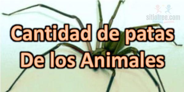 Cantidad de patas de los animales